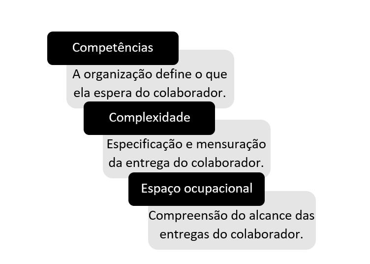 quadros em preto e cinza explicando o que é competência, capacidade e espaço ocupacional
