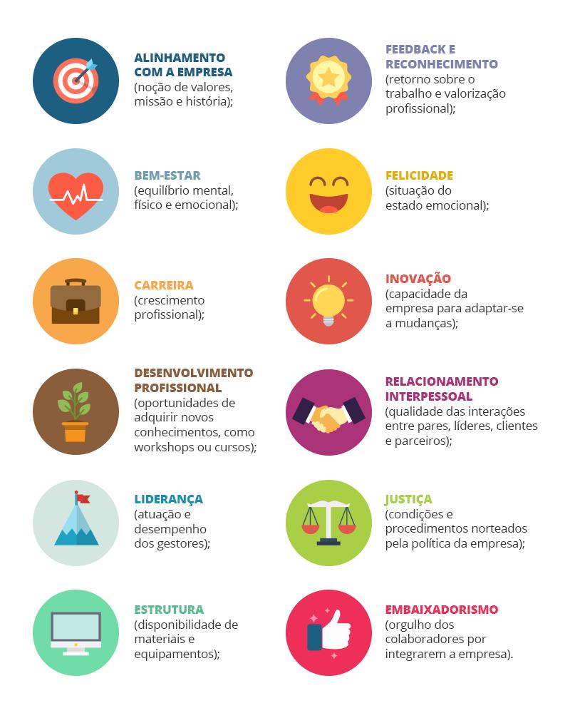 Ícones coloridos representando as doze dimensões da pesquisa de clima organizacional pulses